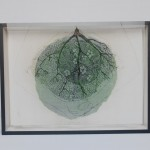 photo, drawing on silk, wood 51 x 69,5 x 11,5 cm / 2014