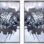 wood, photo, glass 65 x 94 x 4 cm / 2008